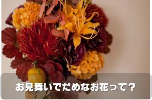 https---www.pakutaso.com-assets_c-2014-10-ELL88_akiirohurawa-arenji20140918153808500-thumb-1000xauto-5465