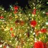 高校生彼氏へクリスマスプレゼント!身も心も温まるグッズ3選