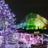 【東京でクリスマスデート】行かなきゃ損するイルミネーション4選